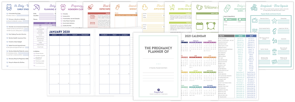 Mom-To-Be Planner