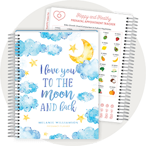 Pregnancy Planners